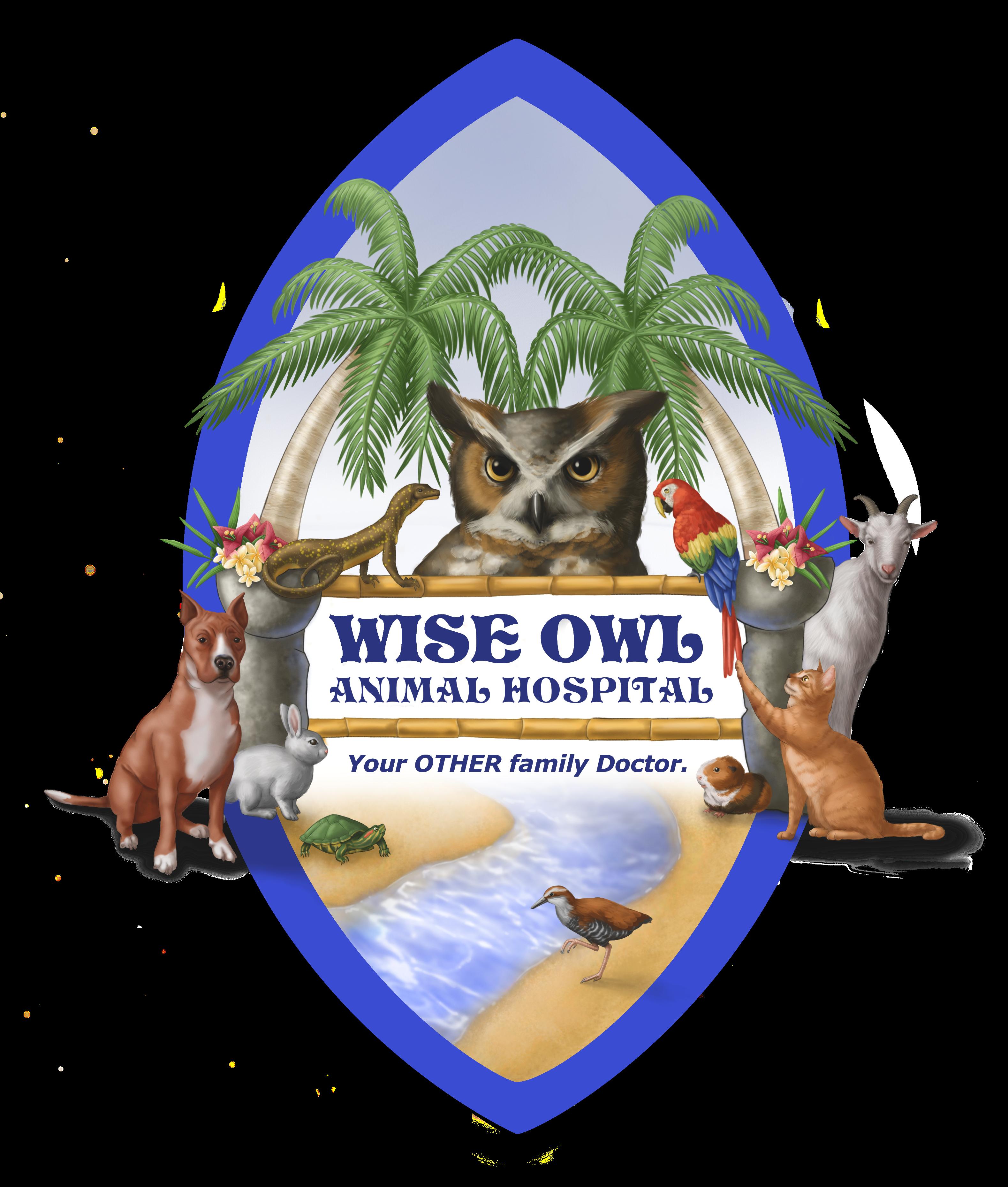 Wise Owl Logo